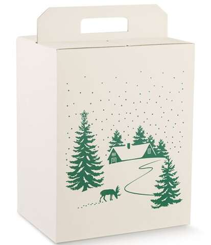 Boite Cadeaux décor sapin vert  : Boites